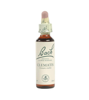 Power Health Bach Clematis 20ml