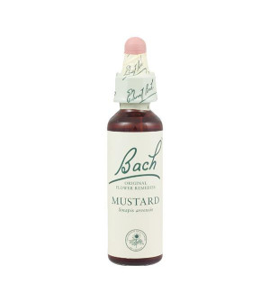 Power Health Bach Mustard 20ml